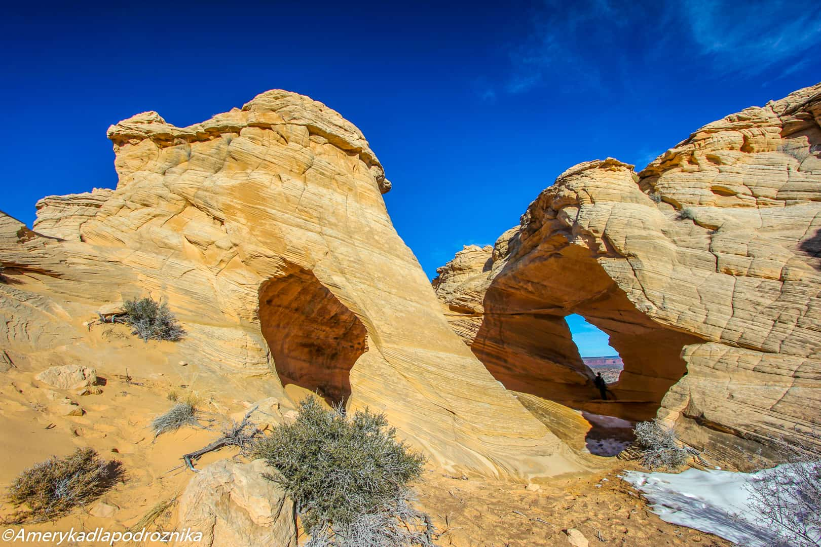 the wave melody arch