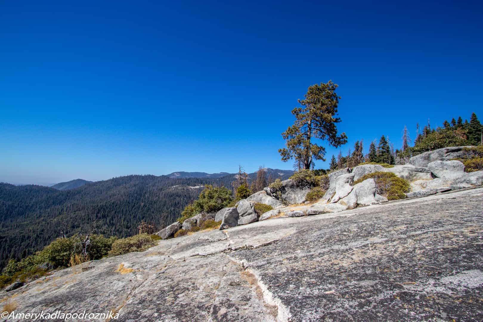 Park Narodowy Sekwoi beetle rock sequoia national park