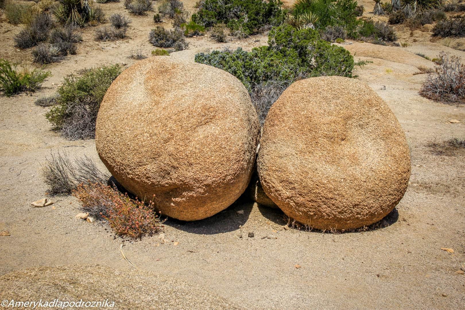 joshua tree split rock