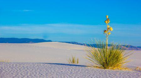 White Sands – biała pustynia w Nowym Meksyku