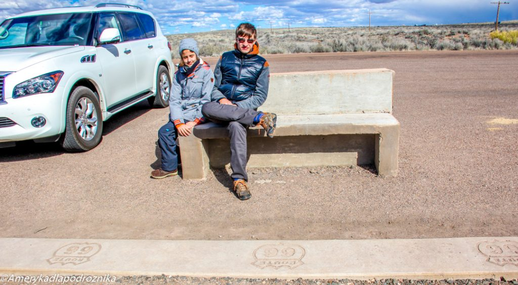 Route 66 w Petrified Forest