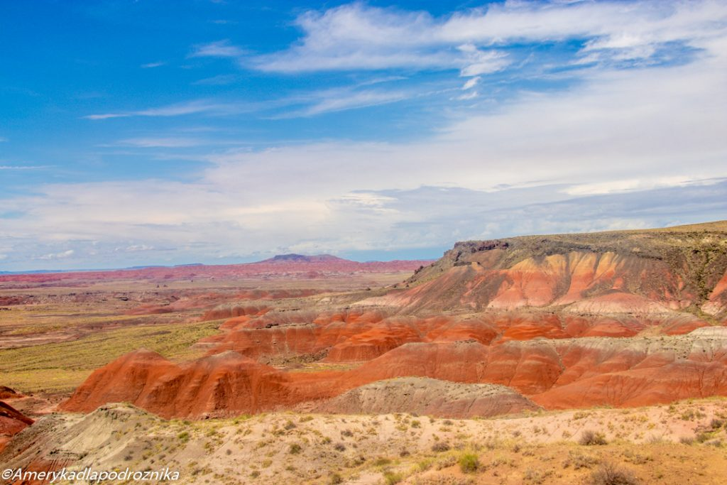 Painted Desert Petrified Forest